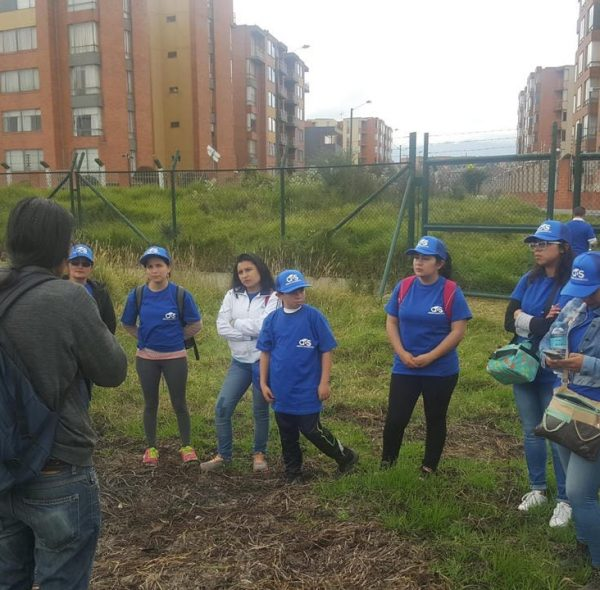 Asesoria ambiental (1)