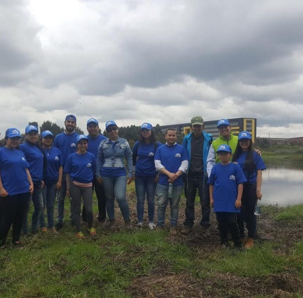 Asesoria ambiental (4)