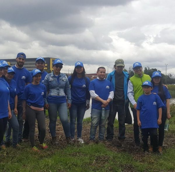 Asesoria ambiental (5)